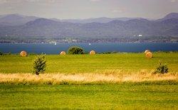 Shelburne Lake Champlain Hay