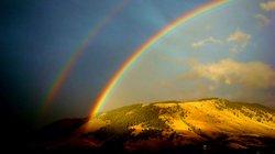 Rainbowfpot