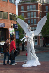 Harvard Square Angel
