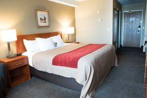 Brilliant Accommodations In Langley Bc Comfort Inn Suites Langley Ibusinesslaw Wood Chair Design Ideas Ibusinesslaworg