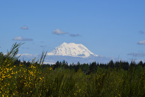 S View Of Mount Rainier From JBLM